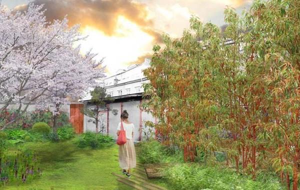 Création du jardin zen, 9 rue Belfort, lyon 04