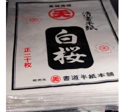 Papier de riz