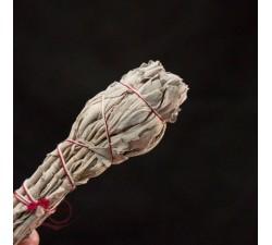 Encens, sauge blanche séchée