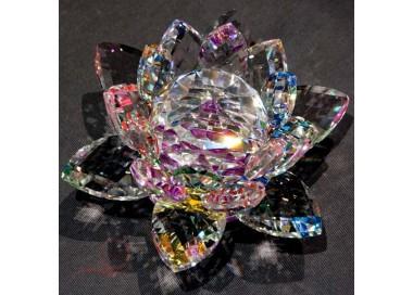 Grande fleur de lotus multi-couleur