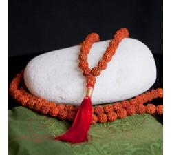 Mala en graines de rudraksha