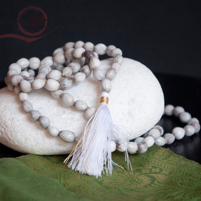 Mala en graines Vaijayanti