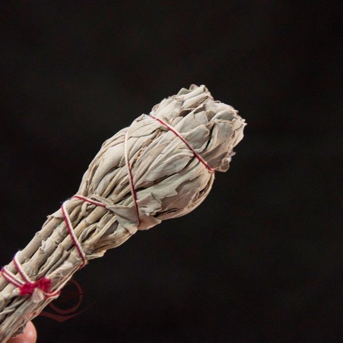 Encens, sauge blanche séchée, 20g