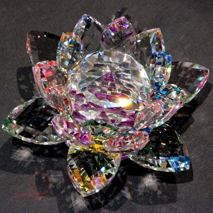 Large multi-color lotus flower