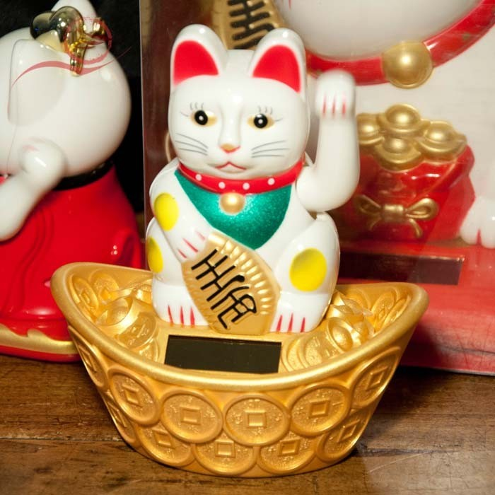 Chat Maneki Neko, sapeque