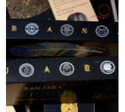 Banjara Benzoin Incense