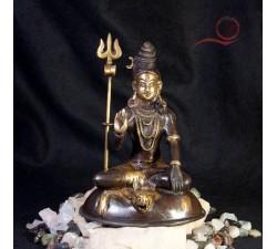 Shiva assis sur une peau de tigre a lyon